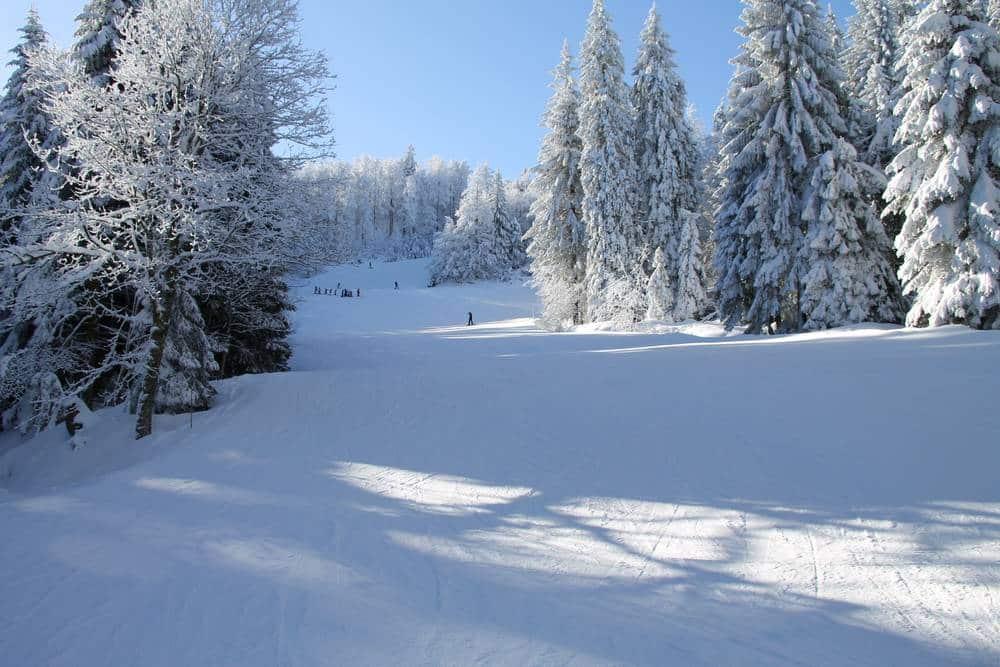 Quand Va-t-il neiger en plaine cet hiver ?